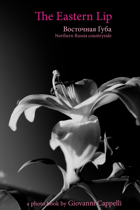 cover book-28.9.11 B&W